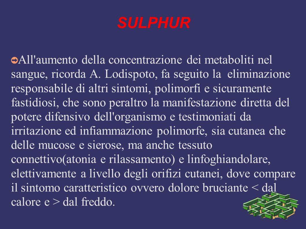 SULPHUR All'aumento della concentrazione dei metaboliti nel sangue, ricorda A. Lodispoto, fa seguito la eliminazione responsabile di altri sintomi, po