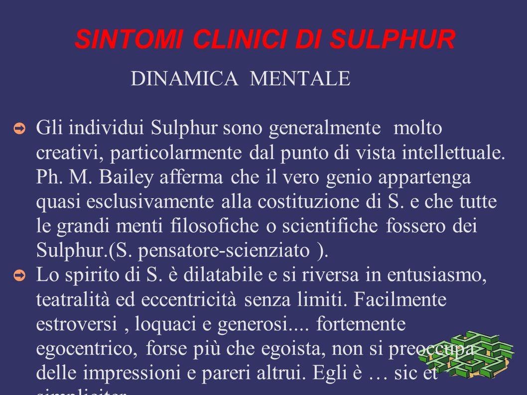 SINTOMI CLINICI DI SULPHUR DINAMICA MENTALE Gli individui Sulphur sono generalmente molto creativi, particolarmente dal punto di vista intellettuale.