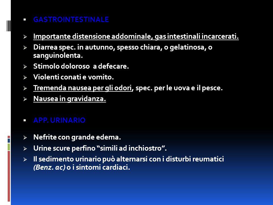 GASTROINTESTINALE Importante distensione addominale, gas intestinali incarcerati.
