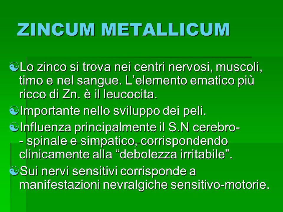 ZINCUM METALLICUM Lo zinco si trova nei centri nervosi, muscoli, timo e nel sangue. Lelemento ematico più ricco di Zn. è il leucocita. Lo zinco si tro