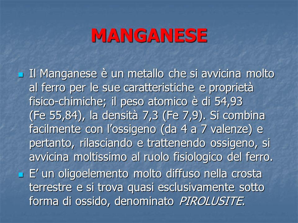 MANGANESE Il manganese è un elemento essenziale per i vegetali, nei quali previene la clorosi fogliare (alias anemia), così come è stata confermata la sua importanza quale catalizzatore della sintesi dellemoglobina nei globuli rossi.