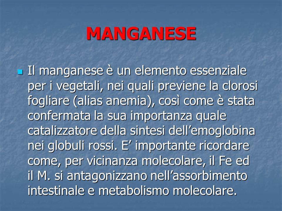 MANGANESE Il manganese è un elemento essenziale per i vegetali, nei quali previene la clorosi fogliare (alias anemia), così come è stata confermata la