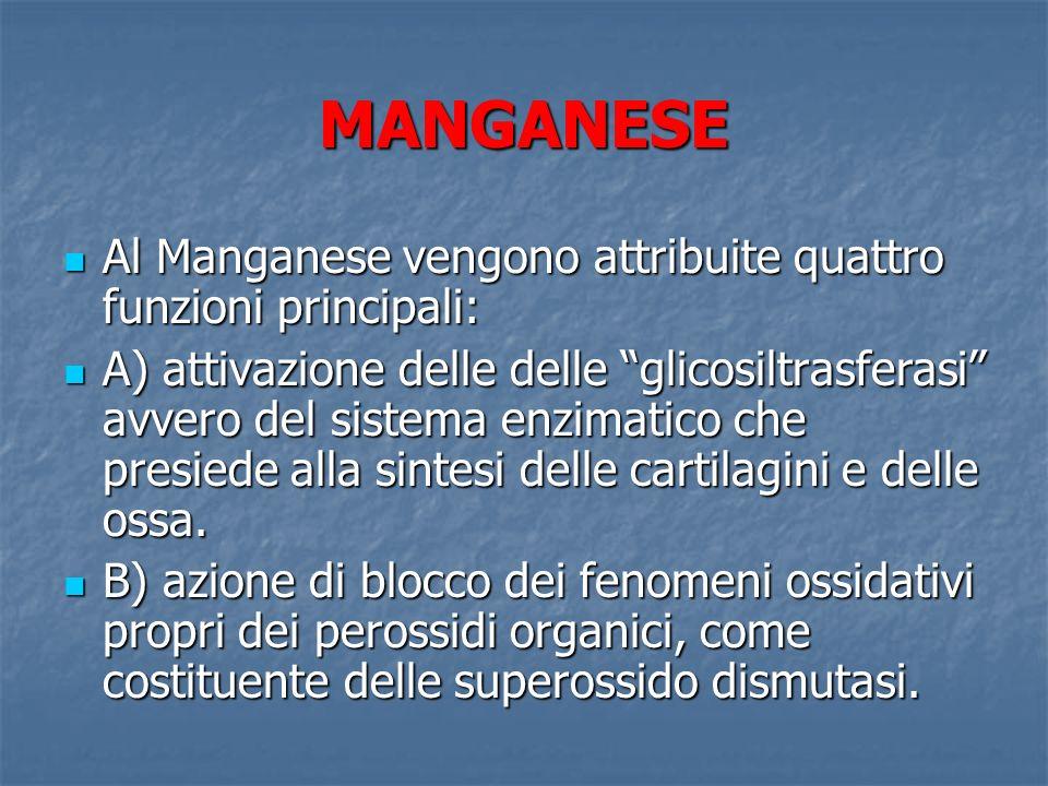 MANGANESE Al Manganese vengono attribuite quattro funzioni principali: Al Manganese vengono attribuite quattro funzioni principali: A) attivazione del