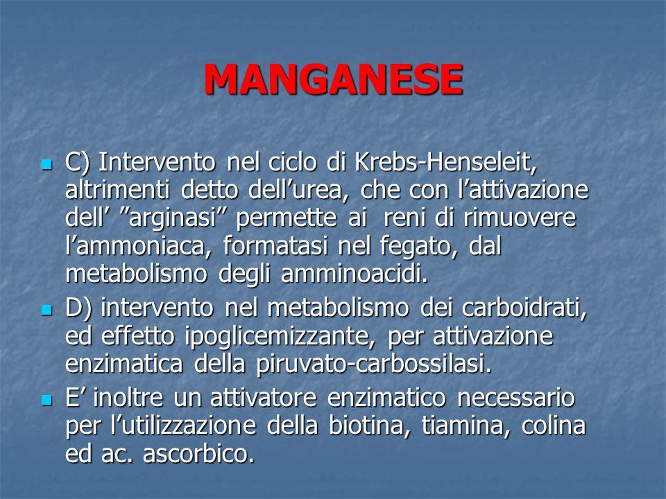 MANGANESE C) Intervento nel ciclo di Krebs-Henseleit, altrimenti detto dellurea, che con lattivazione dell arginasi permette ai reni di rimuovere lamm