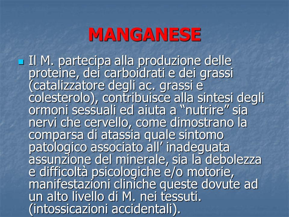 MANGANESE Il M. partecipa alla produzione delle proteine, dei carboidrati e dei grassi (catalizzatore degli ac. grassi e colesterolo), contribuisce al