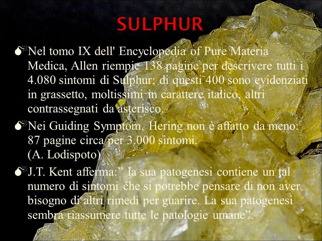 Nel tomo IX dell' Encyclopedia of Pure Materia Medica, Allen riempie 138 pagine per descrivere tutti i 4.080 sintomi di Sulphur; di questi 400 sono ev