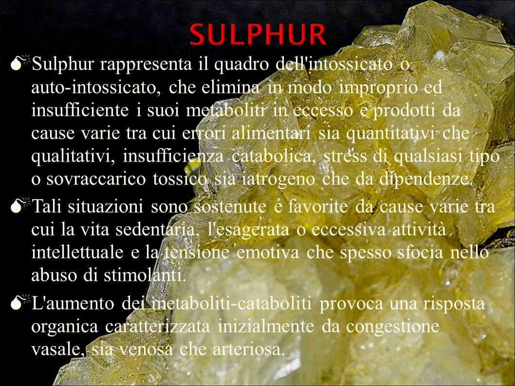 Sulphur rappresenta il quadro dell'intossicato o auto-intossicato, che elimina in modo improprio ed insufficiente i suoi metaboliti in eccesso e prodo
