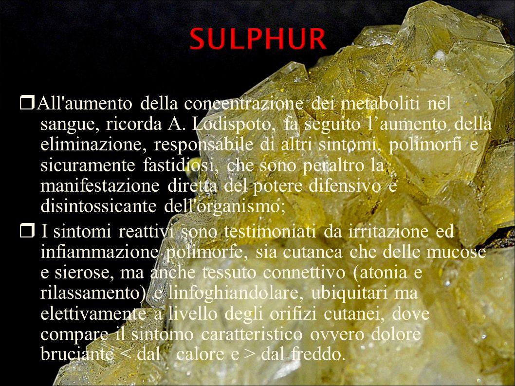 DINAMICA MENTALE DINAMICA MENTALE Gli individui Sulphur sono generalmente molto creativi, particolarmente dal punto di vista intellettuale.