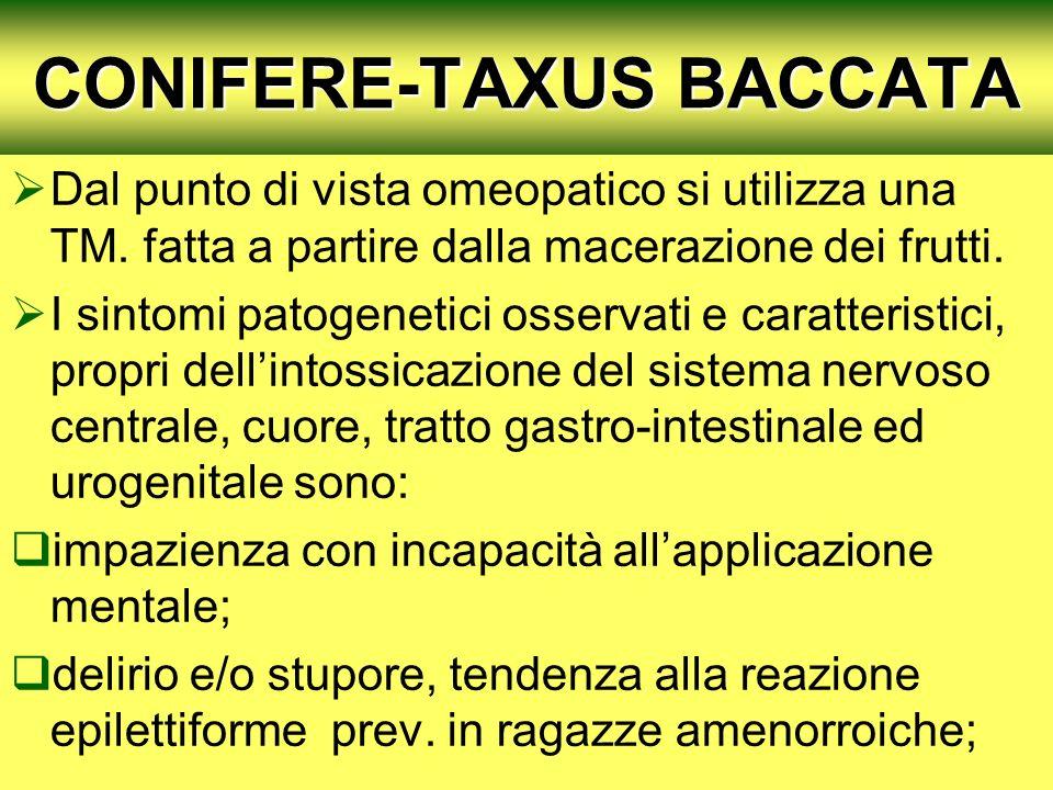 CONIFERE-TAXUS BACCATA Dal punto di vista omeopatico si utilizza una TM. fatta a partire dalla macerazione dei frutti. I sintomi patogenetici osservat