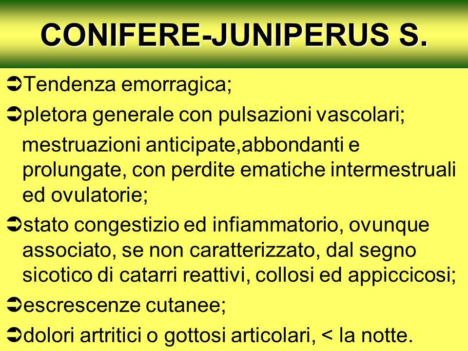 CONIFERE-JUNIPERUS S. Tendenza emorragica; pletora generale con pulsazioni vascolari; mestruazioni anticipate,abbondanti e prolungate, con perdite ema