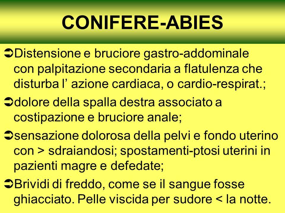 CONIFERE-ABIES Distensione e bruciore gastro-addominale con palpitazione secondaria a flatulenza che disturba l azione cardiaca, o cardio-respirat.; d
