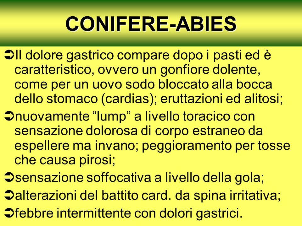 CONIFERE-ABIES Il dolore gastrico compare dopo i pasti ed è caratteristico, ovvero un gonfiore dolente, come per un uovo sodo bloccato alla bocca dell
