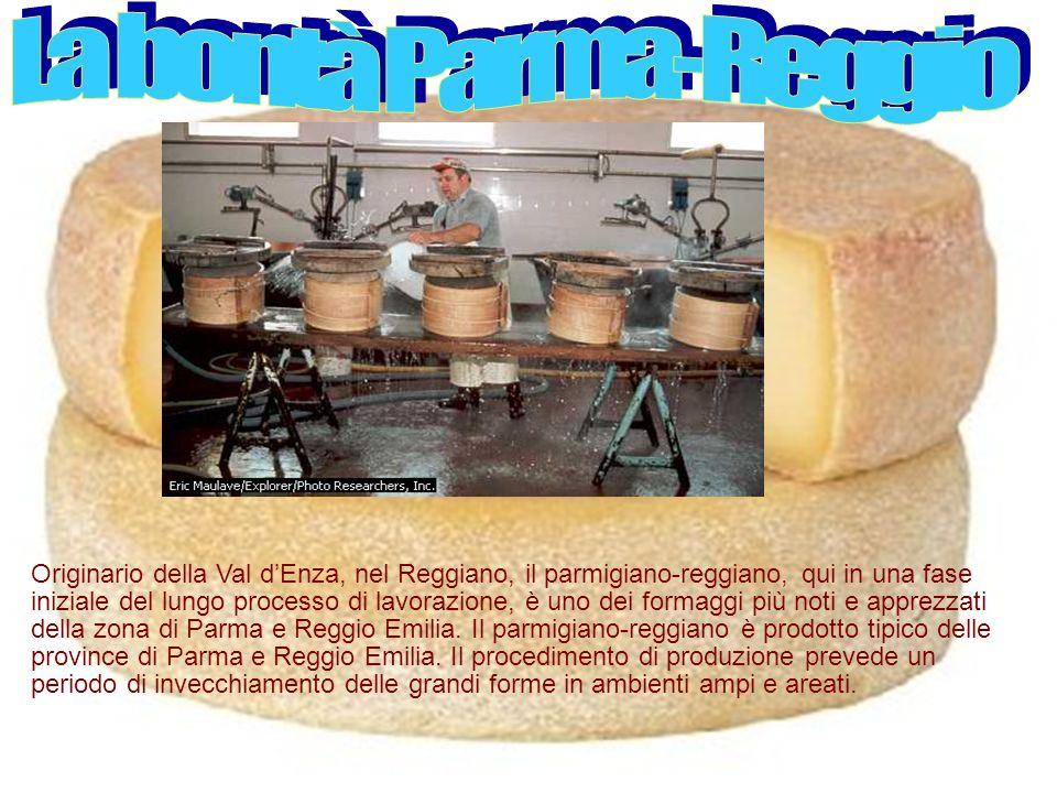 Originario della Val dEnza, nel Reggiano, il parmigiano-reggiano, qui in una fase iniziale del lungo processo di lavorazione, è uno dei formaggi più noti e apprezzati della zona di Parma e Reggio Emilia.