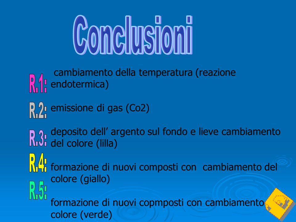cambiamento della temperatura (reazione endotermica) emissione di gas (Co2) deposito dell argento sul fondo e lieve cambiamento del colore (lilla) for