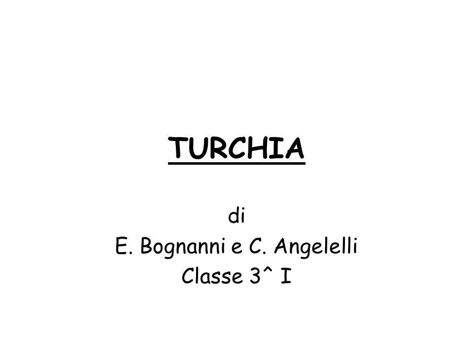 TURCHIA di E. Bognanni e C. Angelelli Classe 3^ I