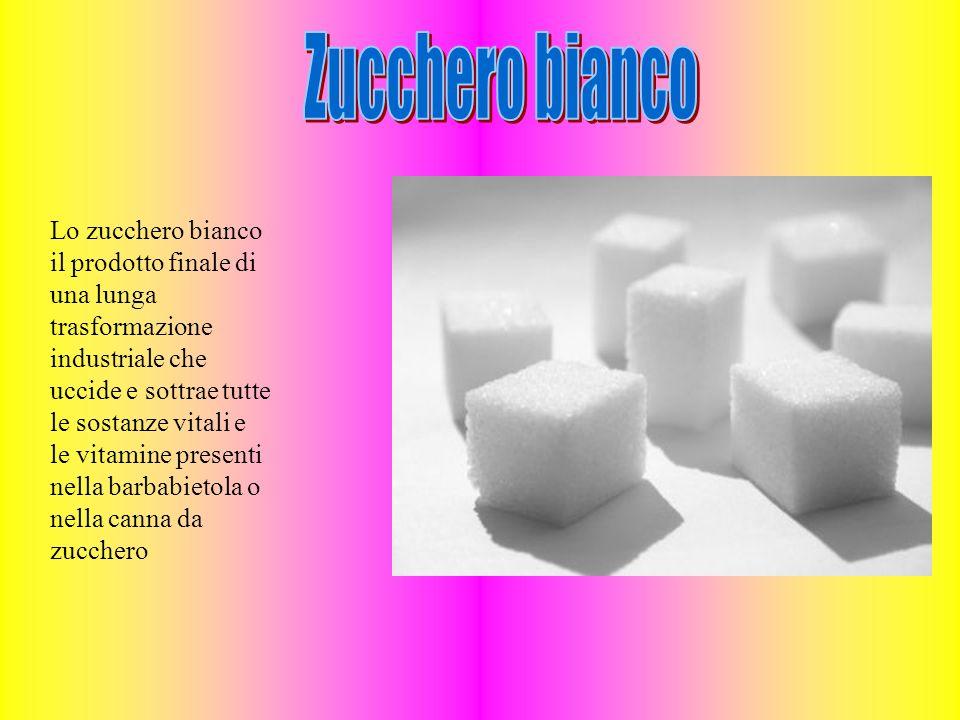 Lo zucchero bianco il prodotto finale di una lunga trasformazione industriale che uccide e sottrae tutte le sostanze vitali e le vitamine presenti nella barbabietola o nella canna da zucchero