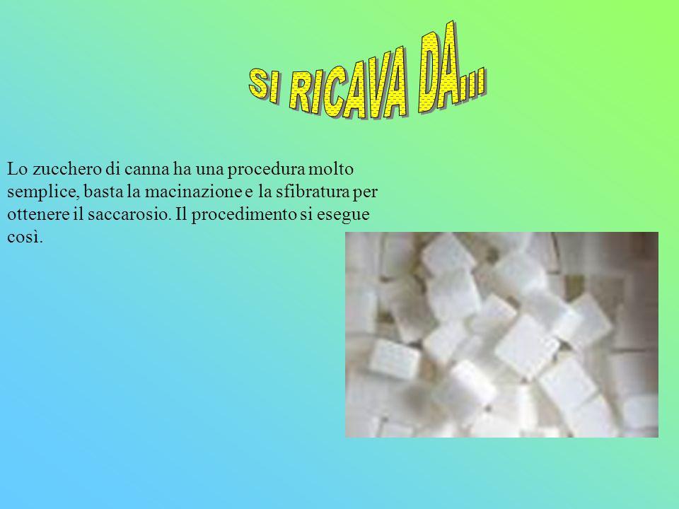 Lo zucchero di canna ha una procedura molto semplice, basta la macinazione e la sfibratura per ottenere il saccarosio.