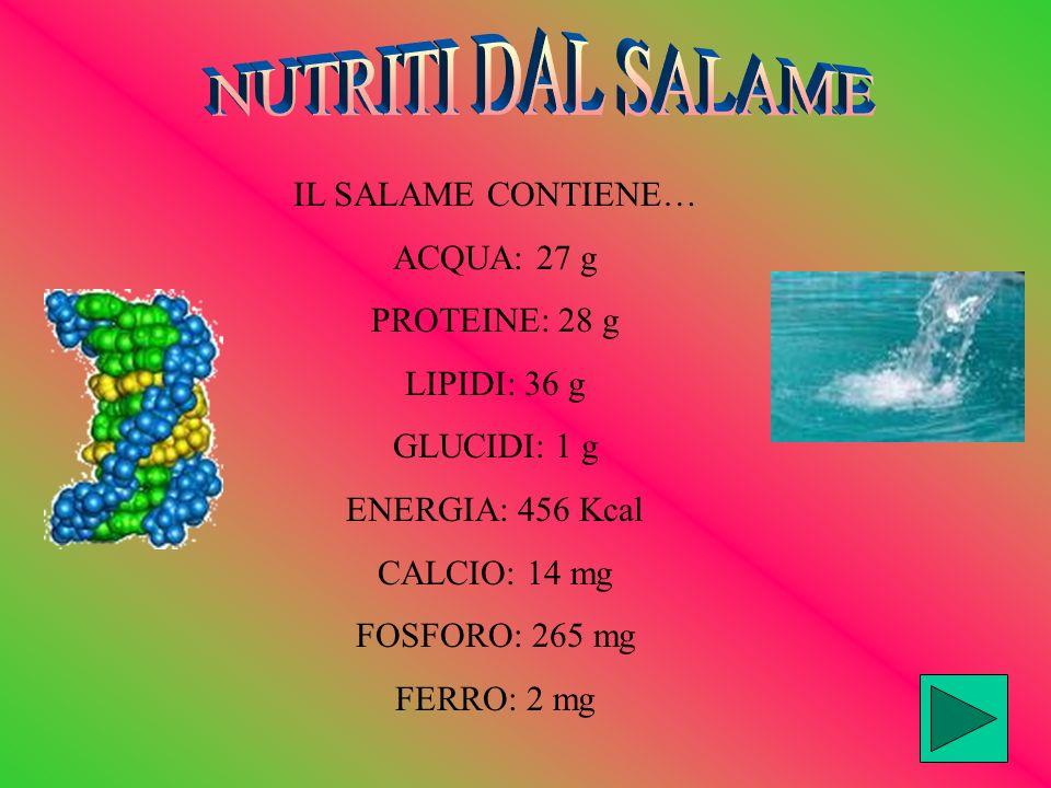 IL SALAME CONTIENE… ACQUA: 27 g PROTEINE: 28 g LIPIDI: 36 g GLUCIDI: 1 g ENERGIA: 456 Kcal CALCIO: 14 mg FOSFORO: 265 mg FERRO: 2 mg