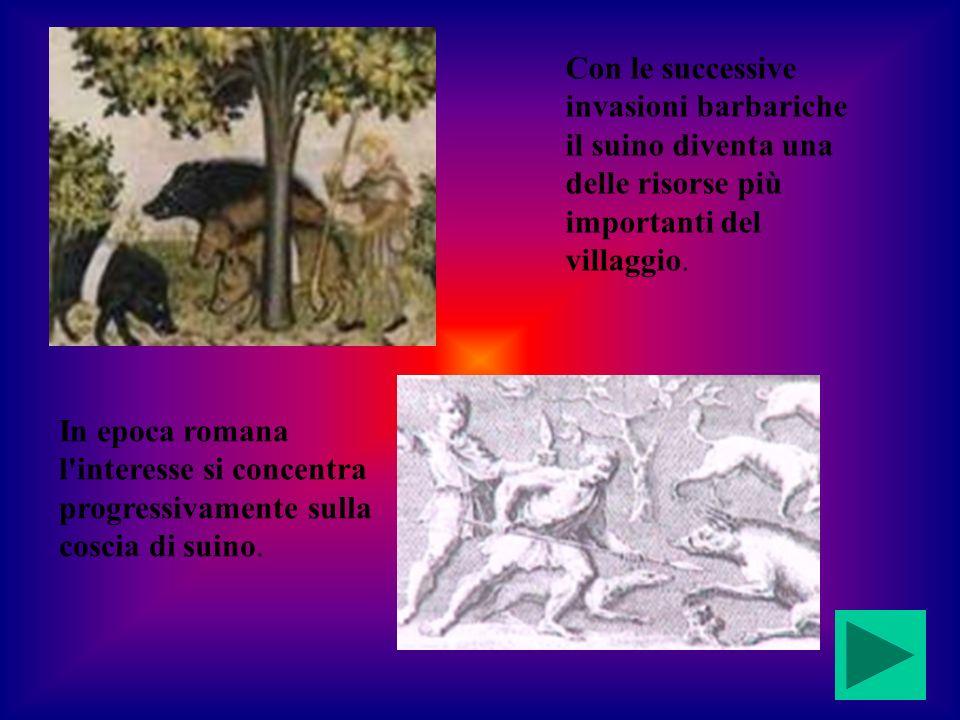 In epoca romana l'interesse si concentra progressivamente sulla coscia di suino. Con le successive invasioni barbariche il suino diventa una delle ris