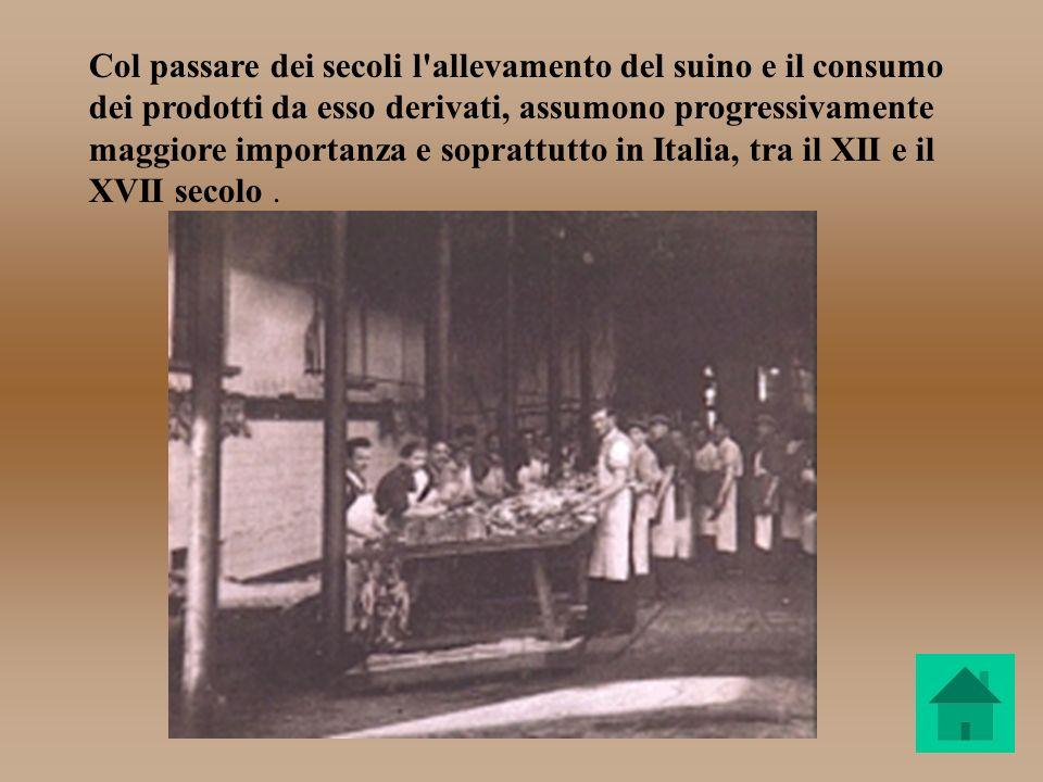Col passare dei secoli l'allevamento del suino e il consumo dei prodotti da esso derivati, assumono progressivamente maggiore importanza e soprattutto