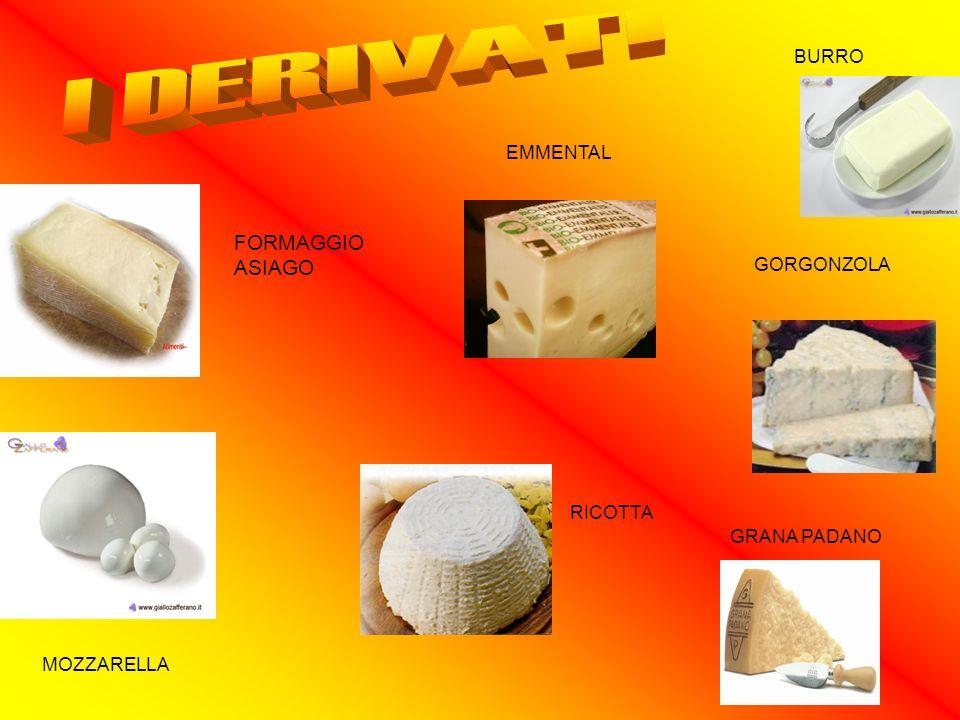 ORIGINI DEL BURRO La preparazione del burro è, probabilmente, uno dei metodi più antichi per conservare i grassi del latte.