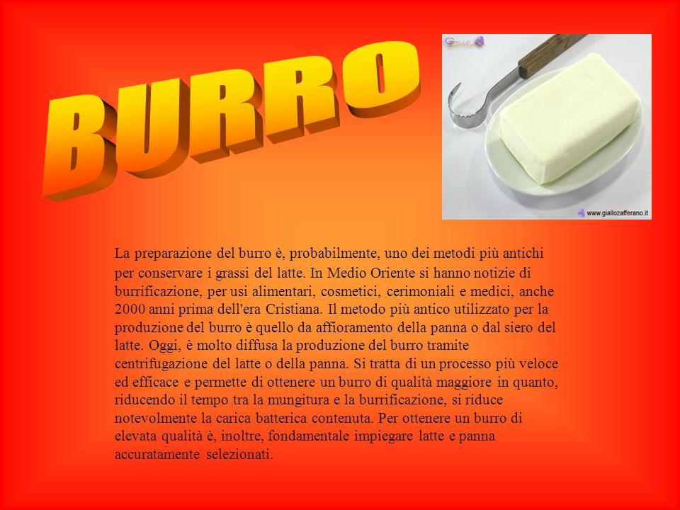 ORIGINI DEL BURRO La preparazione del burro è, probabilmente, uno dei metodi più antichi per conservare i grassi del latte. In Medio Oriente si hanno