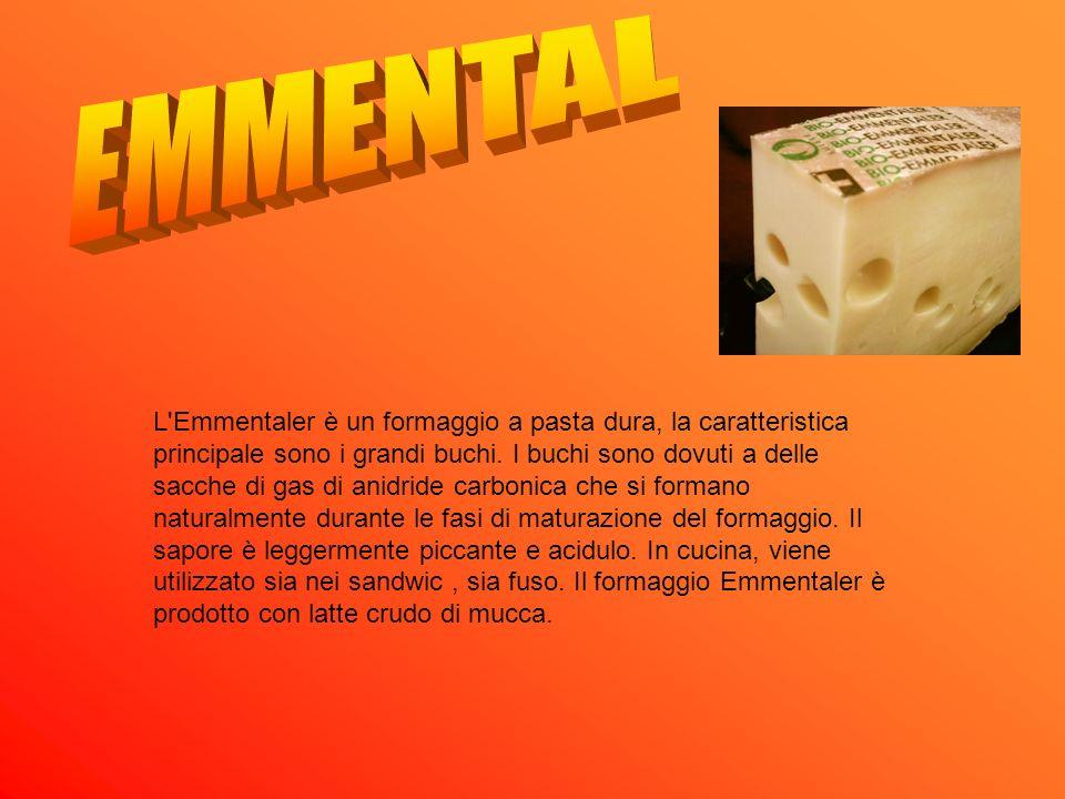 L'Emmentaler è un formaggio a pasta dura, la caratteristica principale sono i grandi buchi. I buchi sono dovuti a delle sacche di gas di anidride carb