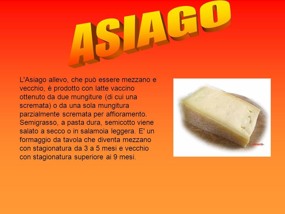 L'Asiago allevo, che può essere mezzano e vecchio, è prodotto con latte vaccino ottenuto da due mungiture (di cui una scremata) o da una sola mungitur