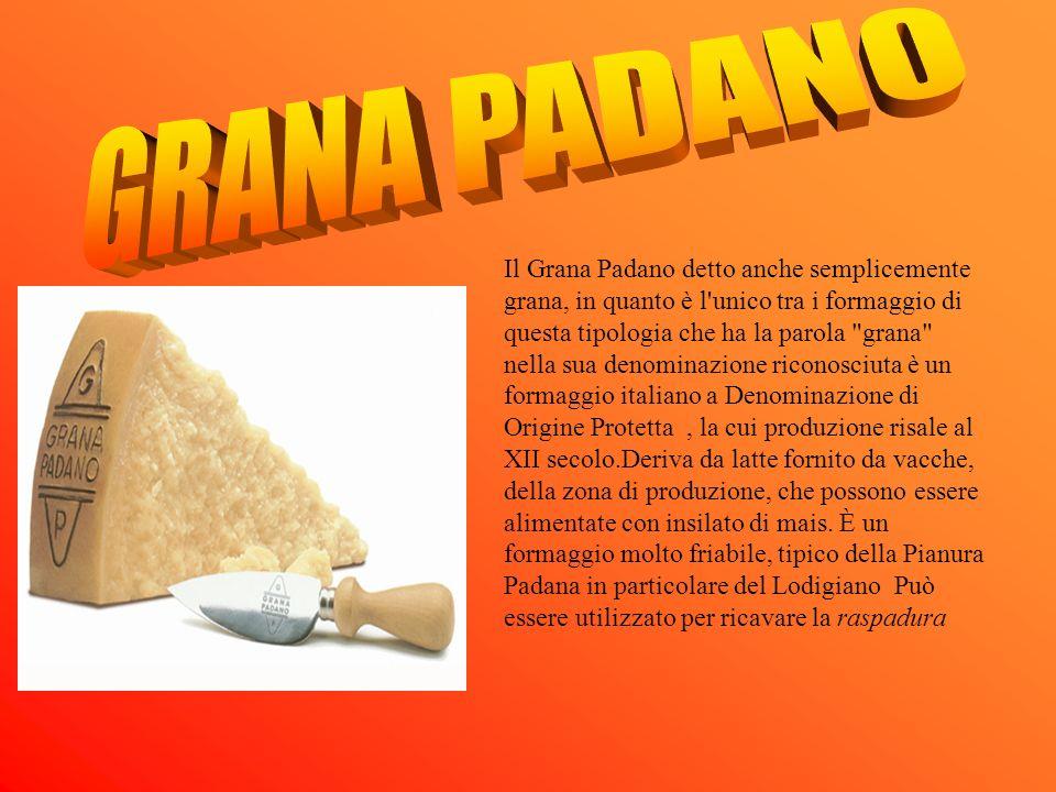 Il Grana Padano detto anche semplicemente grana, in quanto è l'unico tra i formaggio di questa tipologia che ha la parola