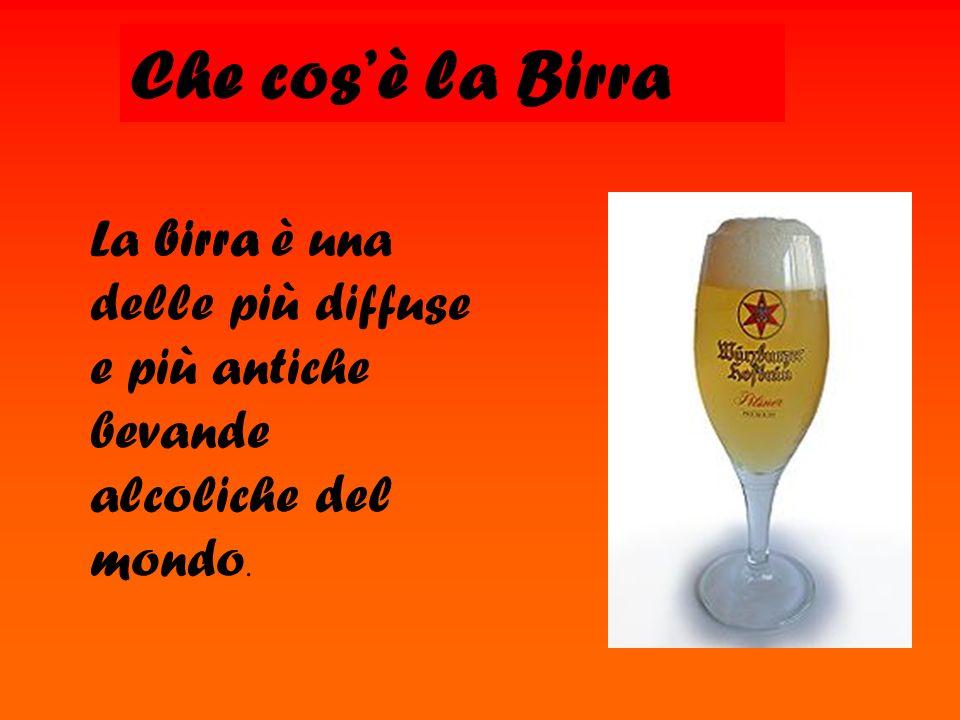 Che cosè la Birra La birra è una delle più diffuse e più antiche bevande alcoliche del mondo.