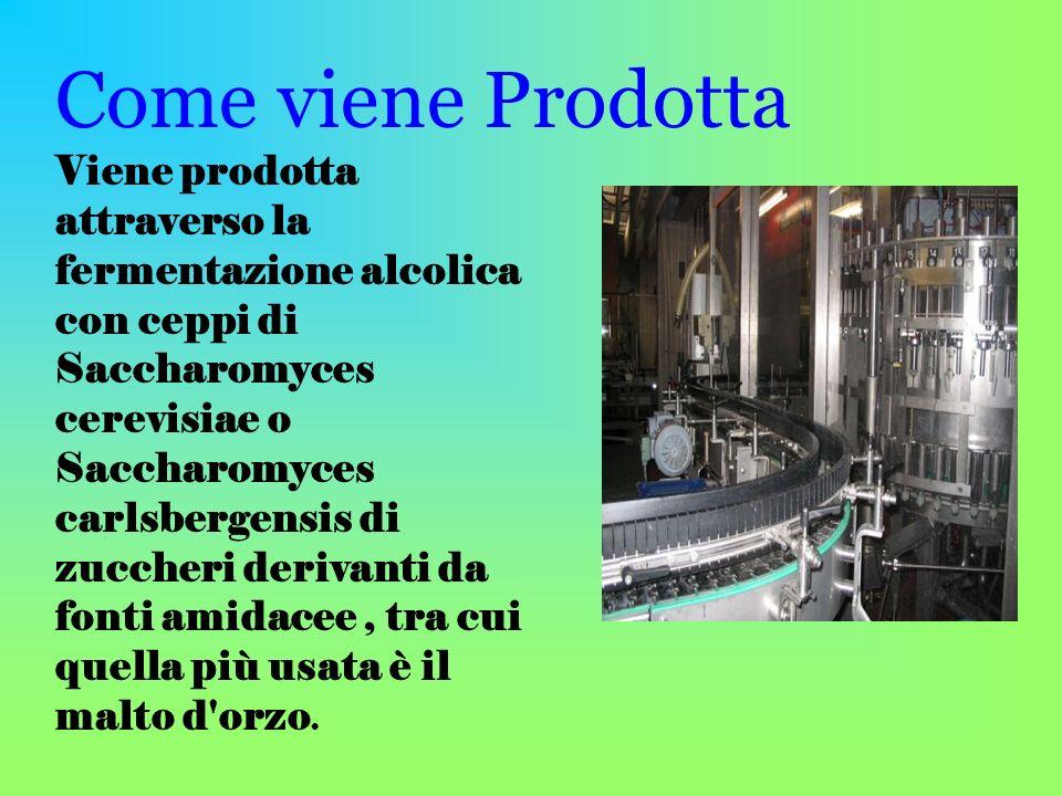 Come viene Prodotta Viene prodotta attraverso la fermentazione alcolica con ceppi di Saccharomyces cerevisiae o Saccharomyces carlsbergensis di zucche