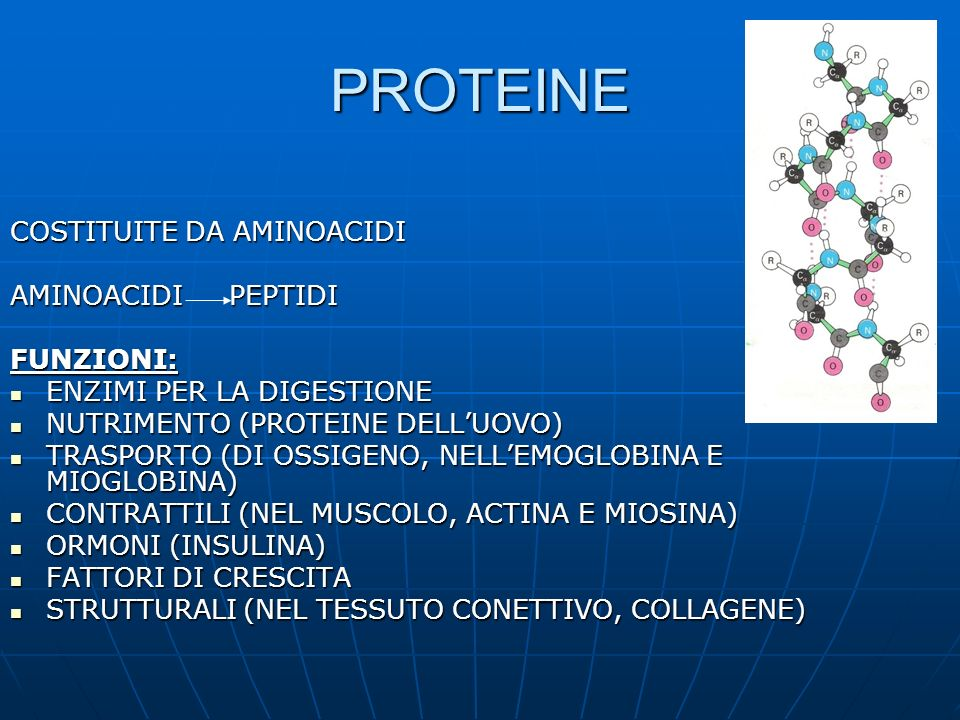 PROTEINE COSTITUITE DA AMINOACIDI AMINOACIDI PEPTIDI FUNZIONI: ENZIMI PER LA DIGESTIONE ENZIMI PER LA DIGESTIONE NUTRIMENTO (PROTEINE DELLUOVO) NUTRIM
