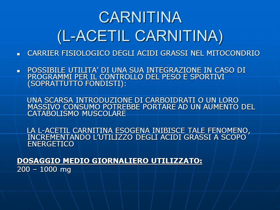CARNITINA (L-ACETIL CARNITINA) CARRIER FISIOLOGICO DEGLI ACIDI GRASSI NEL MITOCONDRIO CARRIER FISIOLOGICO DEGLI ACIDI GRASSI NEL MITOCONDRIO POSSIBILE