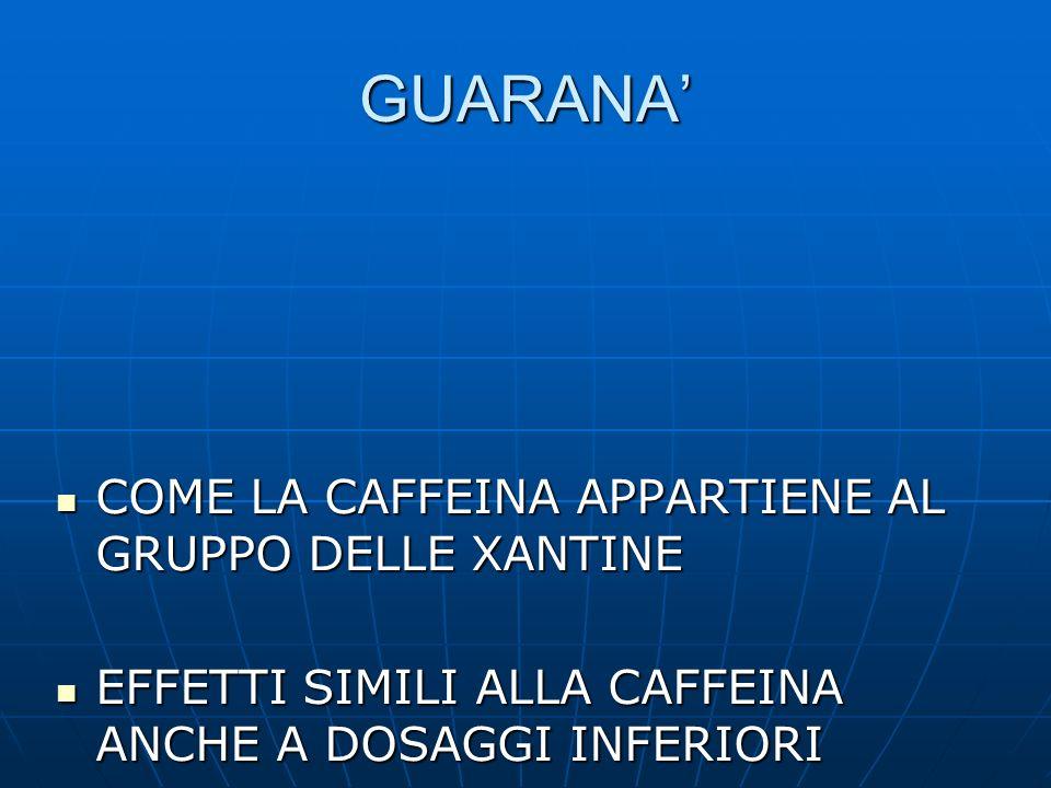 GUARANA COME LA CAFFEINA APPARTIENE AL GRUPPO DELLE XANTINE COME LA CAFFEINA APPARTIENE AL GRUPPO DELLE XANTINE EFFETTI SIMILI ALLA CAFFEINA ANCHE A D