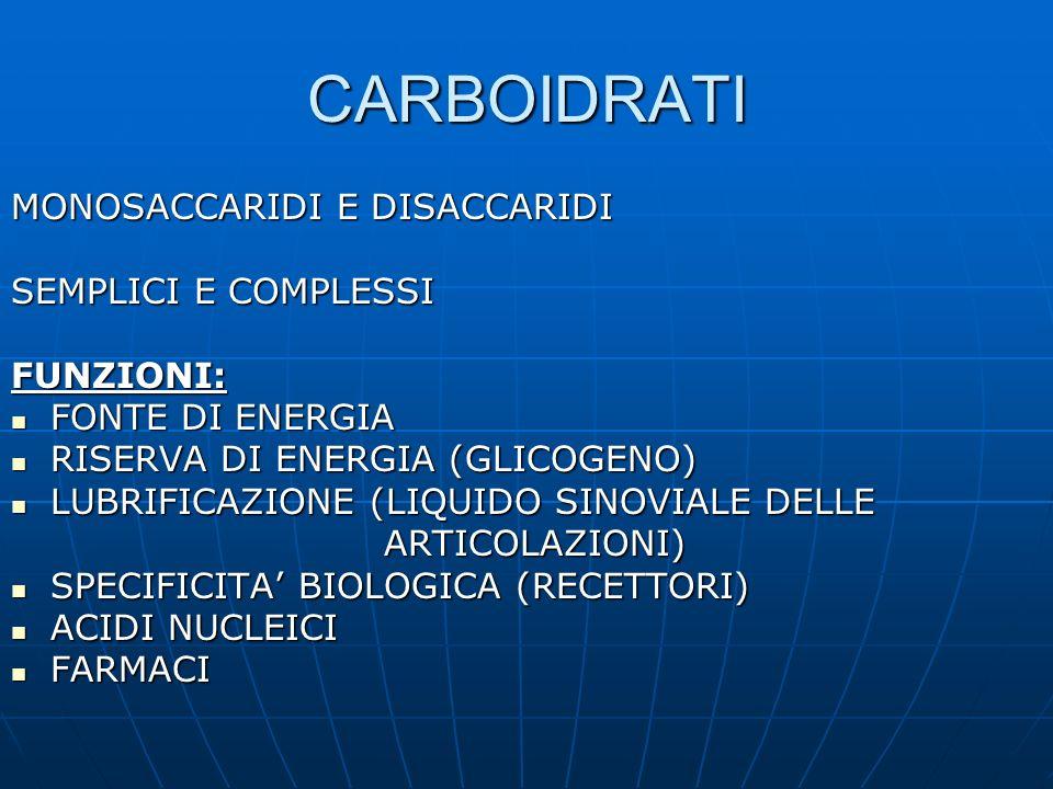 CARBOIDRATI MONOSACCARIDI E DISACCARIDI SEMPLICI E COMPLESSI FUNZIONI: FONTE DI ENERGIA FONTE DI ENERGIA RISERVA DI ENERGIA (GLICOGENO) RISERVA DI ENE