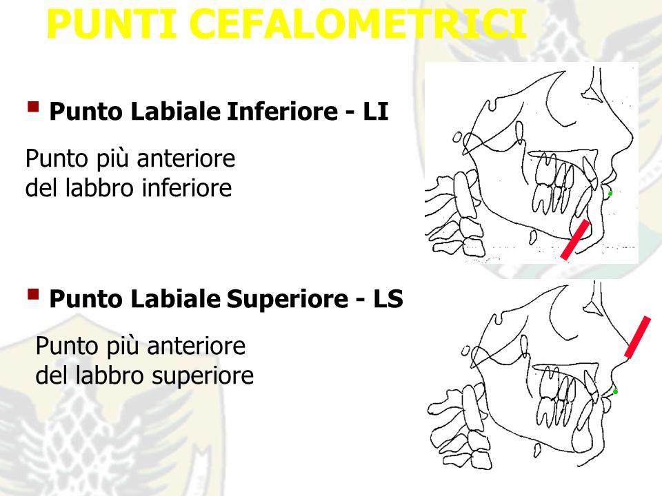 PUNTI CEFALOMETRICI Punto Labiale Inferiore - LI Punto più anteriore del labbro inferiore Punto più anteriore del labbro superiore Punto Labiale Superiore - LS
