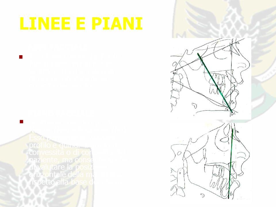 LINEE E PIANI ASSE FACCIALE E la linea che va dal Punto Pterigoideo (Pt) al Punto Gnathion (Gn) e indica la direzione prevista della crescita del mento.