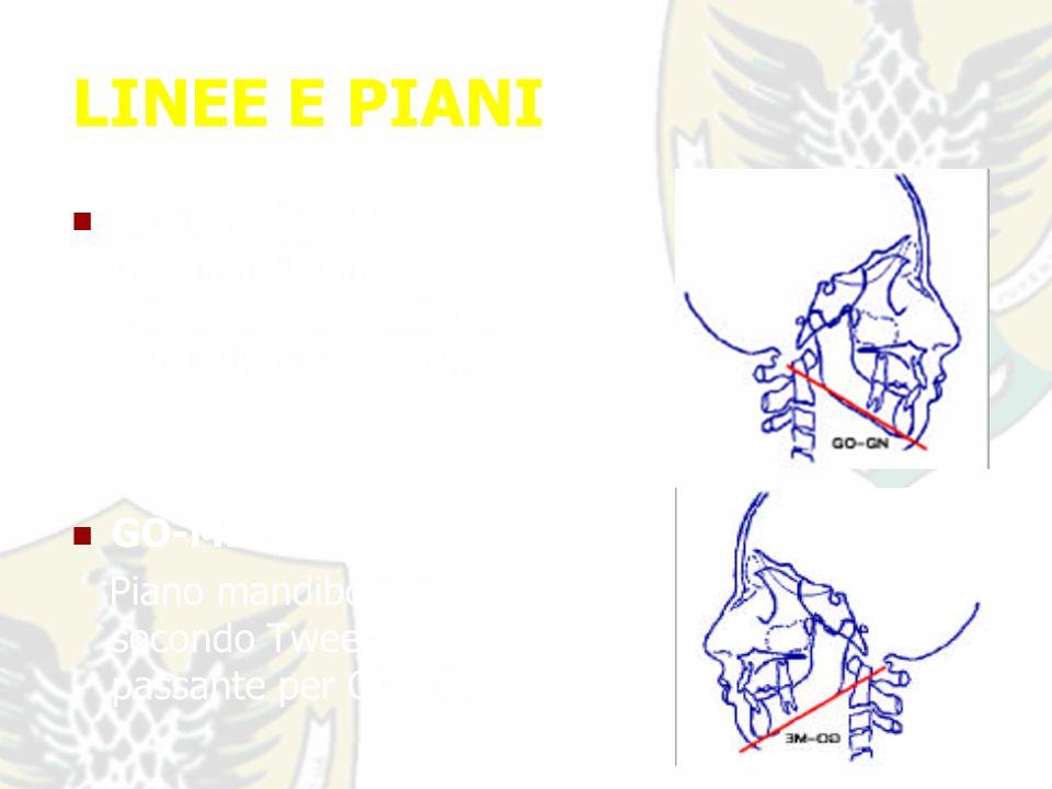 LINEE E PIANI GO-GN:(gonion gnathion) Piano mandibolare passante per i punti GO e GN.