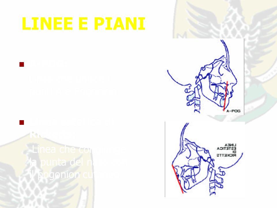 LINEE E PIANI A-POG: Linea che unisce i punti A e Pogonion.