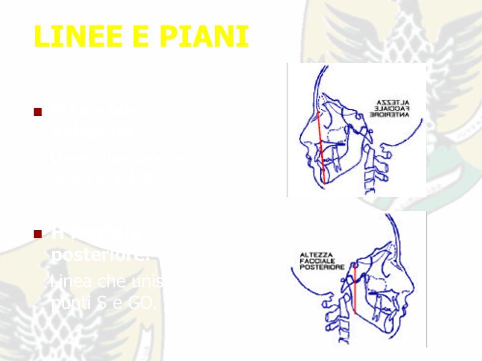 LINEE E PIANI H facciale anteriore: Linea che unisce i punti N e ME.