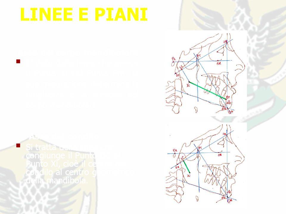 LINEE E PIANI Asse del corpo mandibolare E dato dalla linea che unisce il Punto Xi col Punto Pm: la sua misurazione determina la lunghezza e la crescita del corpo mandibolare.