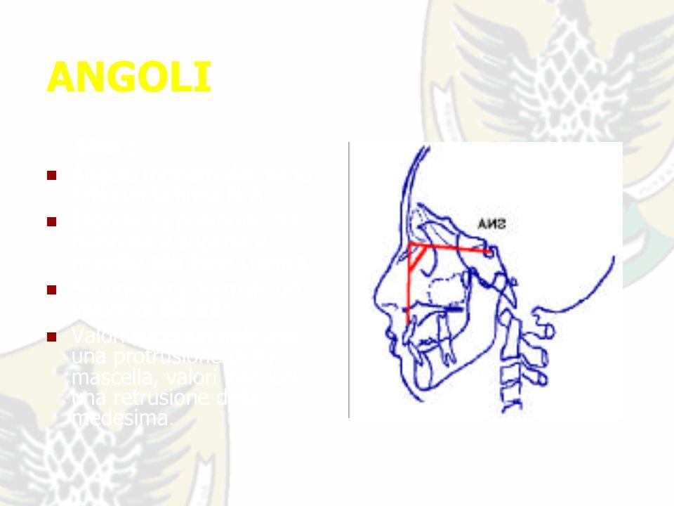 ANGOLI SNA : Angolo formato dal piano S-N con la linea N-A.
