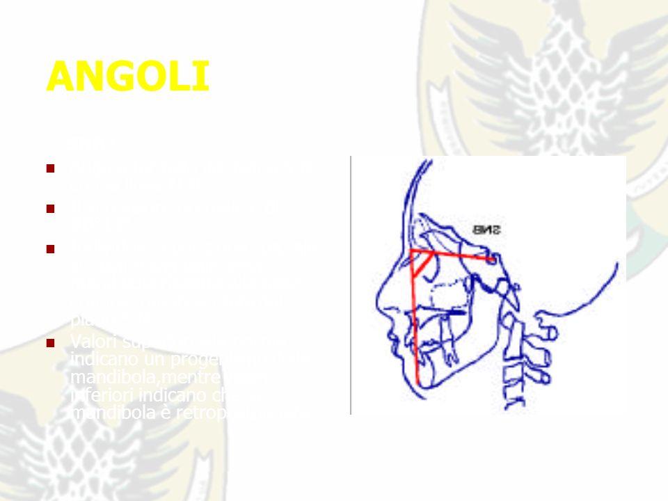 ANGOLI SNB : Angolo formato dal piano S-N con la linea N-B.