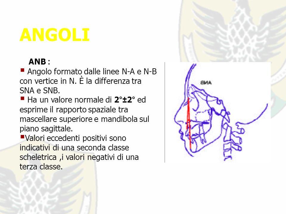 ANGOLI ANB : Angolo formato dalle linee N-A e N-B con vertice in N.