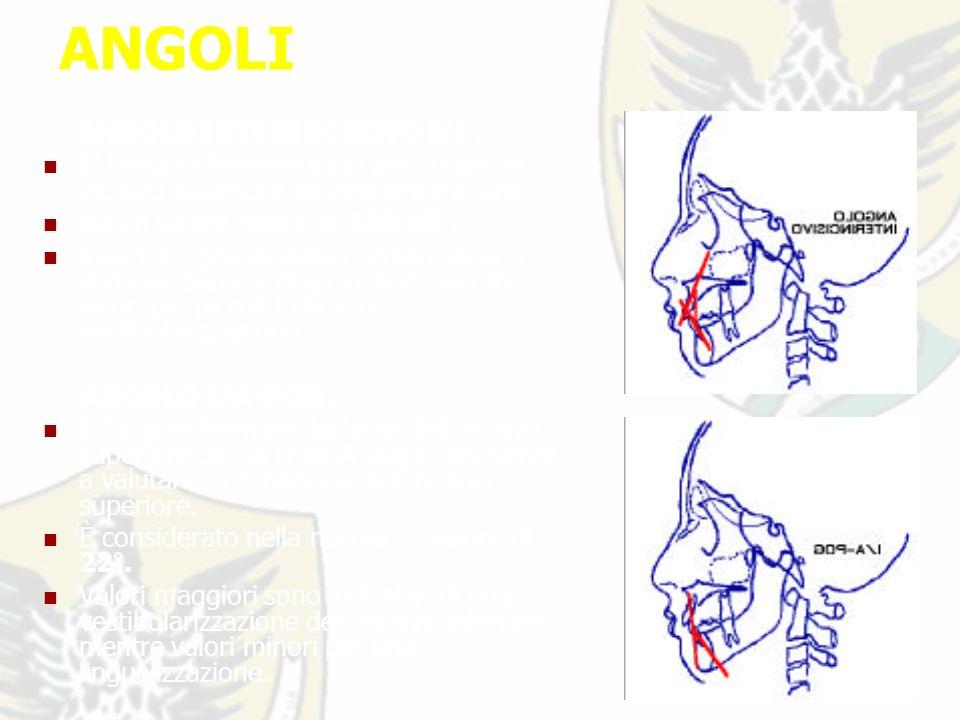 ANGOLI ANGOLO INTERINCISIVO I/I : E l angolo formato dagli assi lunghi di incisivo superiore ed inferiore tra loro.