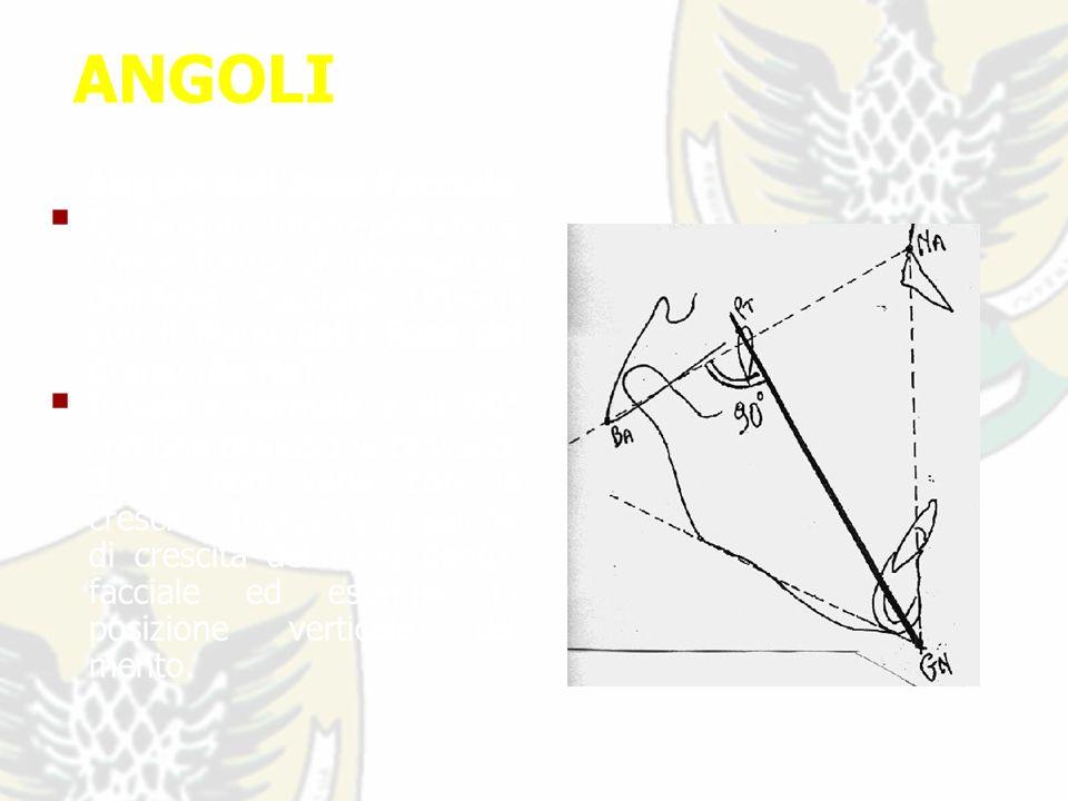 ANGOLI Angolo dellAsse Facciale E langolo infero-posteriore che si forma allintersezione dellAsse Facciale (Pt-Gn) con il Piano della Base del Cranio (Ba-Na).