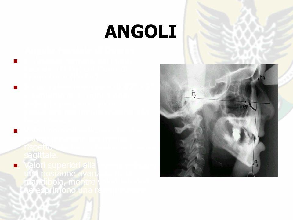 Angolo Facciale di Downs E langolo formato dal Piano Facciale (N-Pg) col Piano di Francoforte (Po-Or).