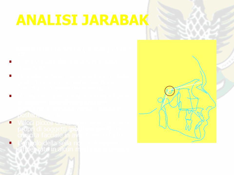 ANALISI JARABAK ANGOLO DELLA SELLA ( N.S.Ar ) : 123 ° ±5°; E individuato dal piano S-N e dalla linea S-Ar.