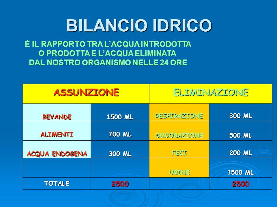 BILANCIO IDRICO ASSUNZIONEELIMINAZIONE BEVANDE 1500 ML RESPIRAZIONE 300 ML ALIMENTI 700 ML SUDORAZIONE 500 ML ACQUA ENDOGENA 300 ML FECI 200 ML URINE