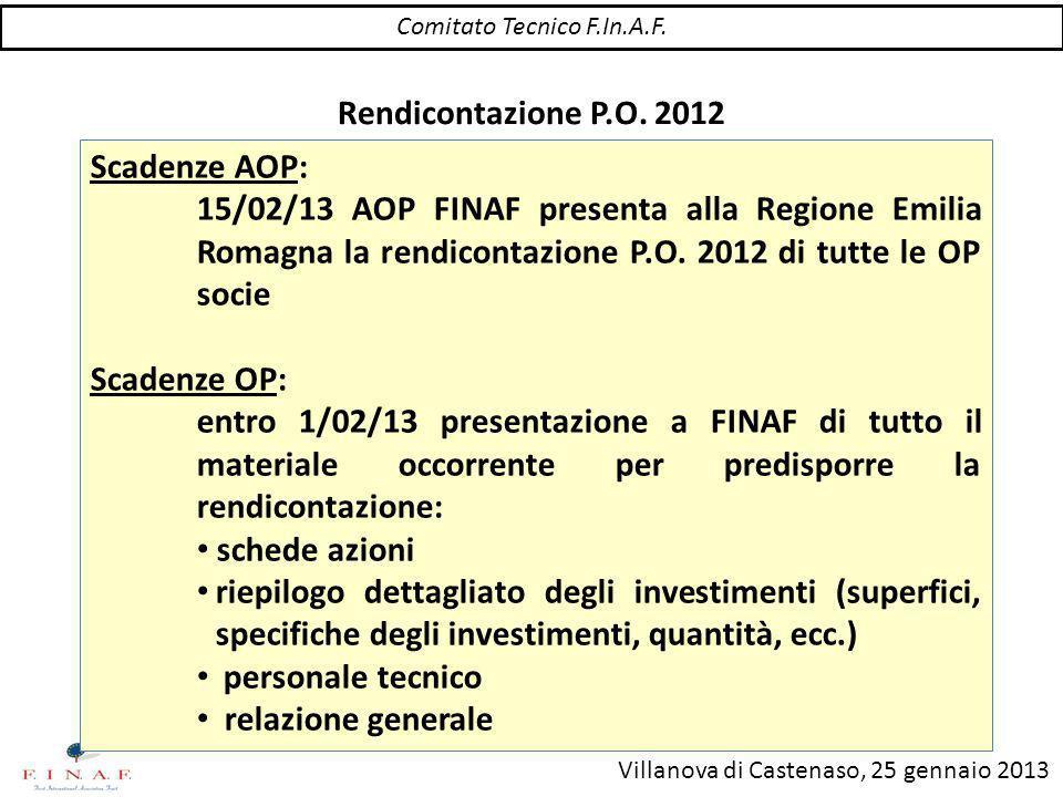 Villanova di Castenaso, 25 gennaio 2013 Rendicontazione P.O.